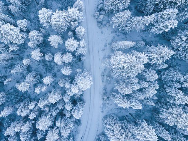 Ferie zimowe w Karpaczu